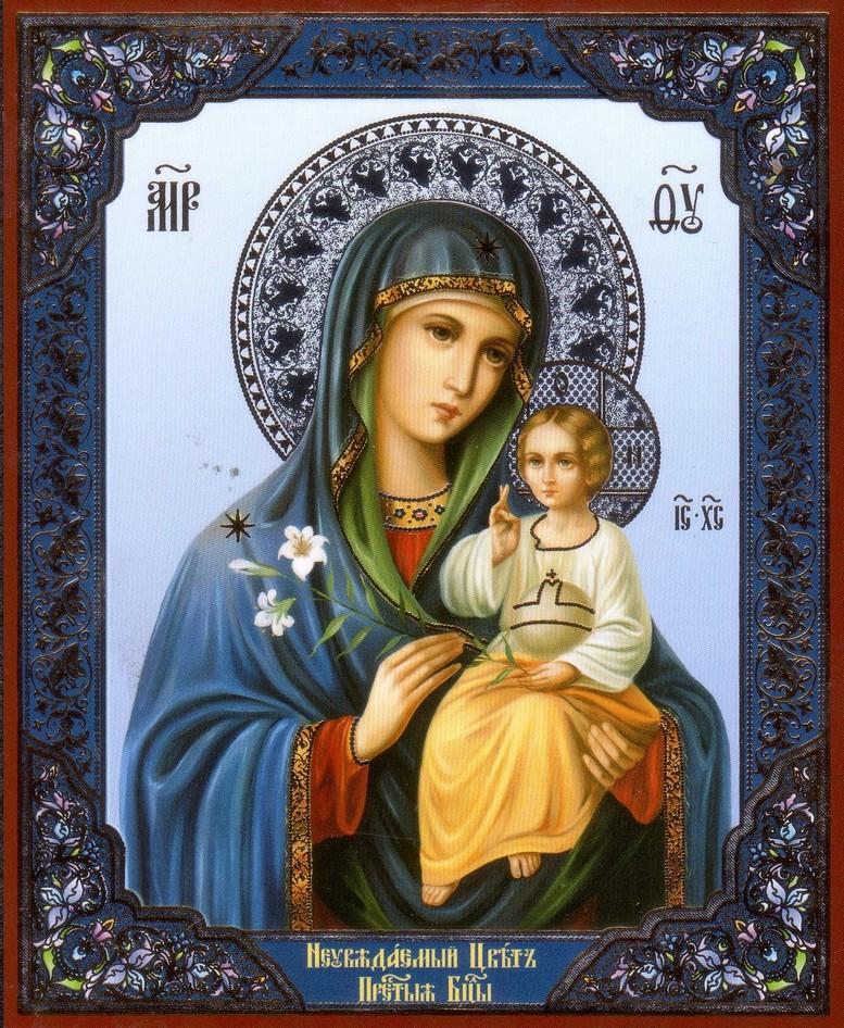 Богородицы свет.  Божественная святость.  Икон Твоих явление.